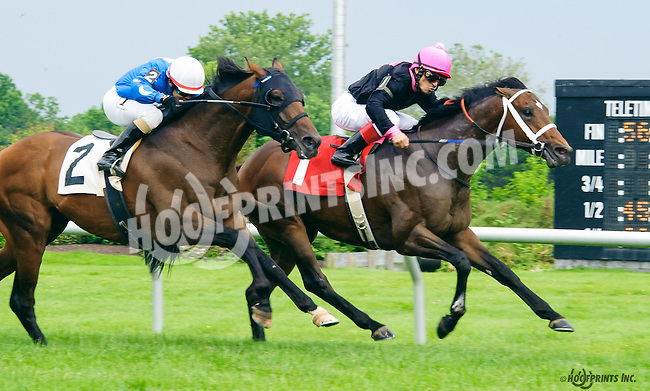 Vittorioso winning at Delaware Park on 6/15/16