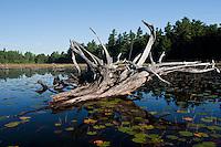 Landscape, Balsam Lake, Killarney Provincial Park, Ontario, Canada