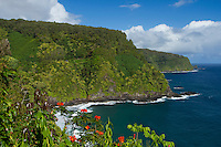 Hana coastline near Keanae, Maui, Hawaii.