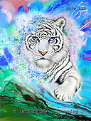 Marie, REALISTIC ANIMALS, REALISTISCHE TIERE, ANIMALES REALISTICOS, paintings+++++WCsWhitTigerFA,USJO203,#A# ,Joan Marie