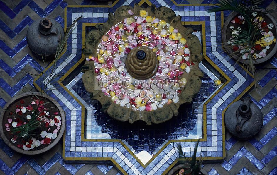 "Afrique/Maghreb/Maroc/Essaouira : Riad ""Casa Lilla"", détail de la terrasse"