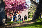_YU19927<br /> <br /> 1704-06 GCS Spring<br /> <br /> April 5, 2017<br /> <br /> Photography by Nate Edwards/BYU<br /> <br /> &copy; BYU PHOTO 2016<br /> All Rights Reserved<br /> photo@byu.edu  (801)422-7322