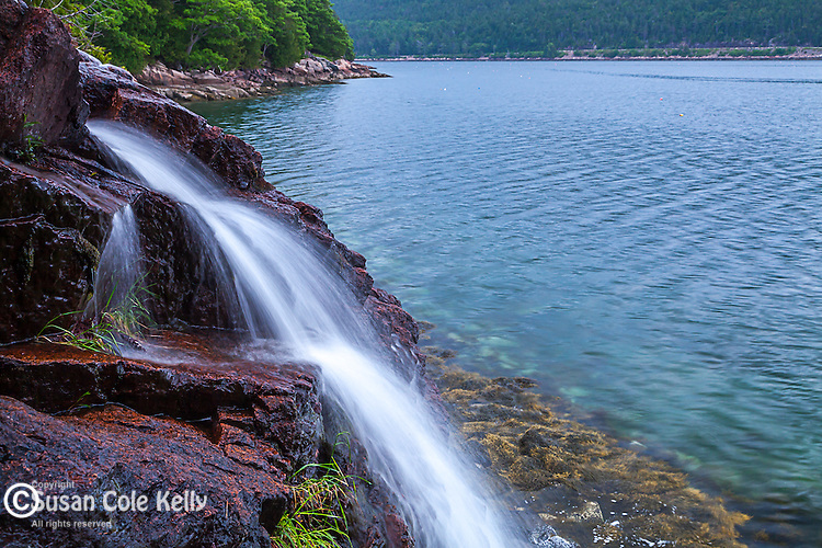Man O' War Brook falls into Somes Sound in Acadia National Park, Maine, USA