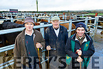 Working hard on the 3rd anniversary sale of Gortatlea Mart  last Friday January 25th were staff L-R Paddy Breen, Joe Kearney and Pat O'Donnell.