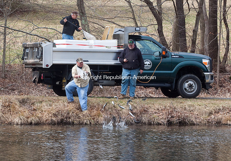 NAUGATUCK CT-APRIL 11 NEW_0114DA06- Dan Hennessey of the Naugatuck Park & Recreation Department releases trout fish in Baummer Pond in Naugatuck for the 22nd Annual James Hennessey Sr. Fishing Derby that will be held on Saturday 8 a.m.-12 p.m. Any child between the ages of 1-16 is welcome to participate. Prizes will be awarded for several categories, Food and beverages will be available. The event is sponsored by AFSCME Local 1303-12 & The Naugatuck Park & Recreation Department. For more information on this event contact 203-720-7071. No pre-registration required.Darlene Douty Republican American