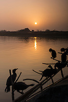 Cormorants rest on a fishing boat at dawn in Poyang county at Poyang Lake, Jiangxi Province, December 2014. Poyang Lake, located in the north of Jiangxi Province, is the largest freshwater lake in China. It fluctuates dramatically between wet and dry seasons, from 3,500 square kilometres down to about 200 square kilometres. The lake provides a habitat for half a million migratory birds.