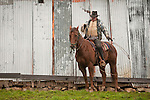 """Doug Joses gathers his lasso to rope a steer during cattle marking and branding with the Dell""""Orto family in the Sierra Nevada Foothills of California. (Mattley Barn).**usage by any anti-livestock individual, group, publication, websites, e-mail or anything similar is prohibited."""