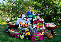 The harvest: Mother and son celebrating a bounty, Maine, USA