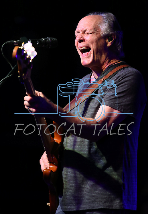 Wayne Nelson of Little River Band performs at the Carson City Concert Under the Stars event benefiting the Greenhouse Project in Carson City, Nev., on Wednesday, July 9, 2014.<br /> Photo by Cathleen Allison