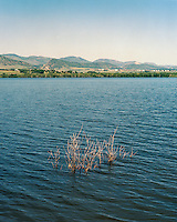 Chatfield Reservoir, in Littleton, Colorado, Monday, June 23, 2015.<br /> <br /> Photo by Matt Nager