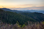 Idaho, North, Coeur d'Alene. A spring dawn in the Idaho Panhandle National Forest.