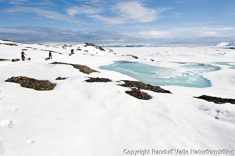 Skiløpere med pulker går langs morenerygger ved ved Sveabreen på Svalbard. ---- Skiers with sleds on Svalbard.