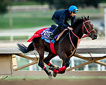 OCT 29: Breeders' Cup Juvenile Turf Sprint entrant Full Flat, trained by Hideyuki Mori, works at Santa Anita Park in Arcadia, California on Oct 29, 2019. Evers/Eclipse Sportswire/Breeders' Cup