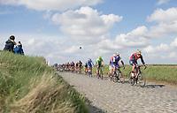 Peloton over the Holleweg cobbles<br /> <br /> 72nd Dwars door Vlaanderen 2017