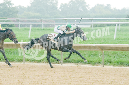 Dimension winning at Delaware Park on 9/5/12