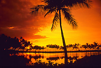 Palm trees fringe the once-royal Hawaiian fishpond at Anaehoomalu Bay at sunset on the Big Island of Hawaii