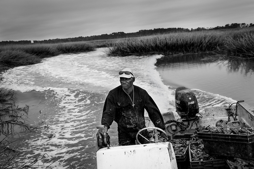 Oysterman Drack Anthony Mervin, who works out of the Bluffton Oyster Company in Bluffton SC., harvests oysters in the May River near Hilton Head Island.