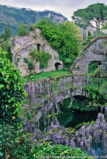Wisteria covers an ancient stone bridge spanning the Ninfa Riveramid the ruins at the Ninfa gardens a few miles south of Rome.