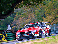 The #46 Camaro of Jordan Taylor and Gunter Schaldach races round the Oak Tree during the Grand-Am Rolex Series test at Virginia International Raceway, Alton, VA , October 2010. (Photo by Brian Cleary/www.bcpix.com)