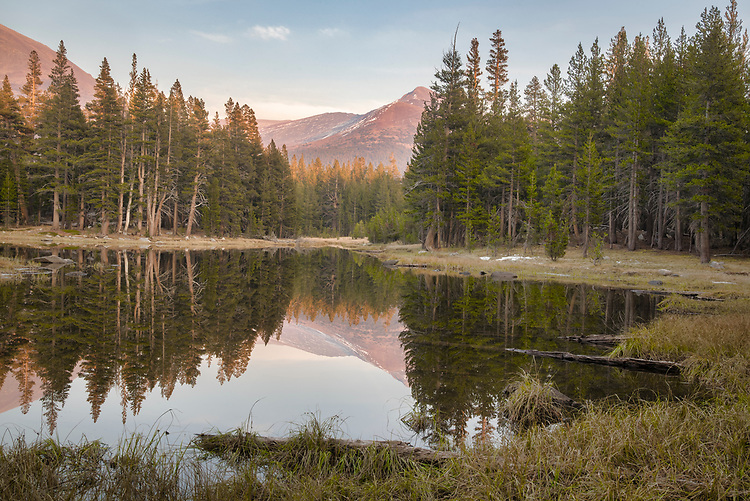 The soft glow of late afternoon sunlight filters through the forests surrounding this placid pond with Mt. Dana in the distance.