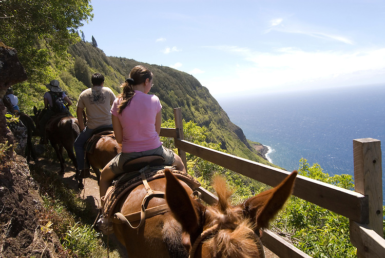 Hawaii: Molokai, the Mule Ride from the cliff tops down 1,600 feet to the leper colony at Kalaupapa..Photo himolo145-72314.Photo copyright Lee Foster, www.fostertravel.com, lee@fostertravel.com, 510-549-2202