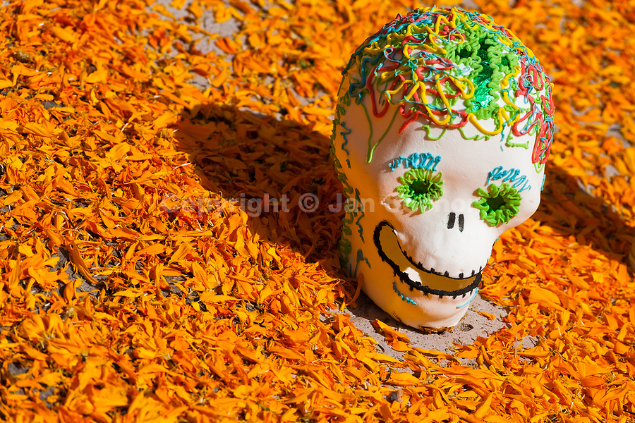 A decorated scull is placed at the altar of the dead (altar de muertos), a religious site honoring the deceased, during the Day of the Dead holiday in Morelia, Michoacán, Mexico, 1 November 2014. Day of the Dead ('Día de Muertos') is a syncretic religious holiday, celebrated throughout Mexico, combining the death veneration rituals of the ancient Aztec culture with the Catholic practice. Based on the belief that the souls of the departed may come back to this world on that day, people gather on the gravesites praying, drinking and playing music, to joyfully remember friends or family members who have died and to support their souls on the spiritual journey.