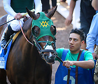 ARCADIA, CA April 7: Bolt D' Oro prior to the Santa Anita Derby (Grade I) on April 7 at Santa Anita Park in Arcadia, CA (Photo by Chris Crestik/ Eclipse Sportswire/ Getty Images)