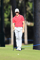 Brandon Stone (RSA) at the 10th green during Thursday's Round 1 of the 2018 Turkish Airlines Open hosted by Regnum Carya Golf &amp; Spa Resort, Antalya, Turkey. 1st November 2018.<br /> Picture: Eoin Clarke | Golffile<br /> <br /> <br /> All photos usage must carry mandatory copyright credit (&copy; Golffile | Eoin Clarke)