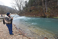 An angler fights a rainbow trout in December 2019 during catch and release fly fishing season at Roaring River State Park. The season ended Monday, but catch and keep season begins March 1.<br />
