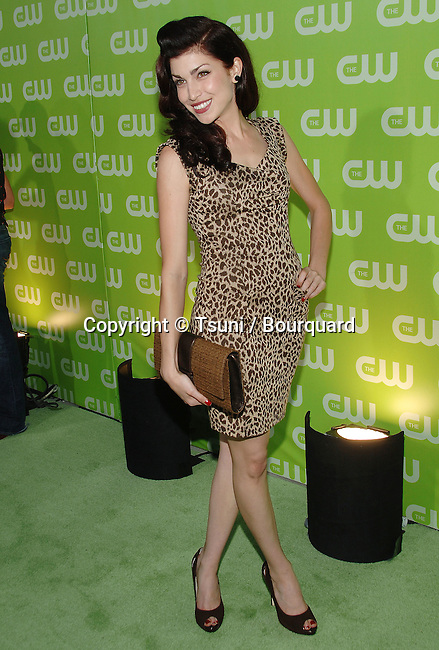 Stevie Ryan ( Online Nation ) arriving at the tca ( television critic association ) CW Summer party on the Fountain Plazza @ The Pacific design Center in Los Angeles.<br /> <br /> full length<br /> smile<br /> leopard dress