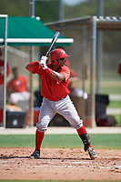 GCL Nationals catcher Jose Cabello (22) at bat during the first game of a doubleheader against the GCL Marlins on July 23, 2017 at Roger Dean Stadium Complex in Jupiter, Florida.  GCL Nationals defeated the GCL Marlins 4-0.  (Mike Janes/Four Seam Images)