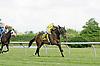 Shetan winning at Delaware Park on 6/7/12