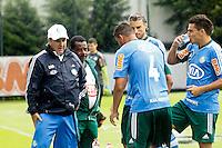 SAO PAULO,SP, 19 DE FEVEREIRO 2013 - TREINO PALMEIRAS  - Gilson Kleina treinador do Palmeiras durante treino na Academia de Futebol, zona oeste da capital, na tarde desta treça-feira(19), a equipe se prepara para 9ª rodada do paulistão - FOTO: LOLA OLIVEIRA//BRAZIL PHOTO PRESS
