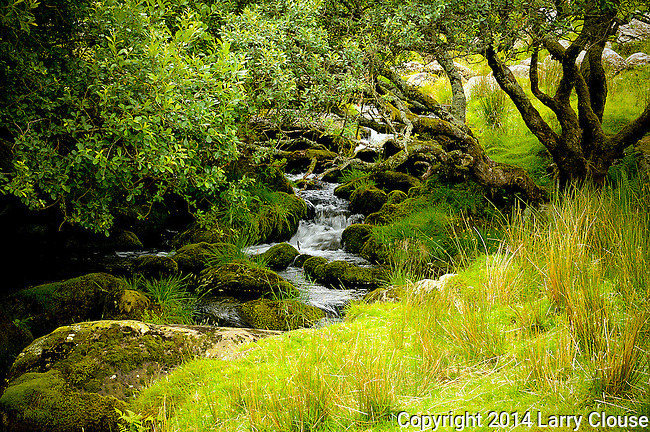 June 2014:  Wales, UK.   Hiking near Llanberis in Snowdonia National Park, Wales.