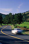 Road and Vineyards, Wooden Valley Road, Napa County, California