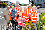 Members of Castleisland Tidy Towns who meet every Monday,Tuesday and Wednesday in Town at 7pm.Front l-r Daniel Brosnan,Eamon Breen,Frank Kenny,Catherine Brosnan,Mary Ann Breen,Terence McQuinn and Shelia Hannon
