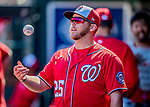 29 February 2020: Washington Nationals infielder Jacob Wilson in the dugout during a Spring Training game against the St. Louis Cardinals at Roger Dean Stadium in Jupiter, Florida. The Cardinals defeated the Nationals 6-3 in Grapefruit League play. Mandatory Credit: Ed Wolfstein Photo *** RAW (NEF) Image File Available ***
