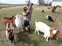 NWA Democrat-Gazette/DAVID GOTTSCHALK  Sicily Burnett, 12, holds a 28 day old boer, meat, goat Thursday, March 14, 2018, on the family farm, D4S Farms, in Winslow. The Burnett family tends poultry, cattle, hogs, ducks and the goats on the 500 acre farm.