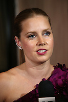 BEVERLY HILLS, CA - NOVEMBER 10: Amy Adams at American Cinematheque&rsquo;s 2017 Award Show honoring Amy Adams at The Beverly Hilton Hotel in Beverly Hills, California  on November 10, 2017. <br /> CAP/MPI/FS<br /> &copy;FS/MPI/Capital Pictures