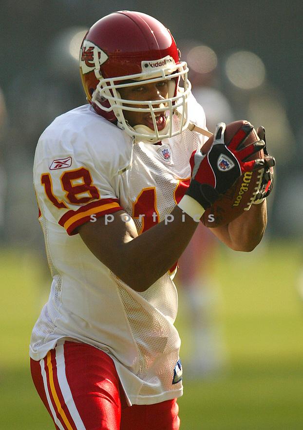 Samie Parker during the Kansas City Chiefs v. Oakland Raiders game on December 5, 2004...Chiefs win 34-27..Rob Holt / SportPics