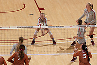 STANFORD, CA - September 8, 2019: Stanford beats Texas 3-2 at Maples Pavilion.