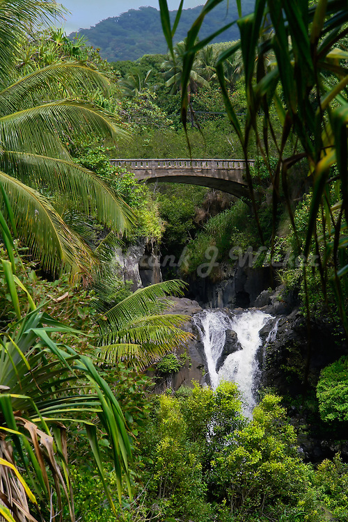Beautiful waterfall nestled amongst tropical vegetation at the seven pools area in the Ohe'o Gulch HALEAKALA NATIONAL PARK on Maui in Hawaii USA