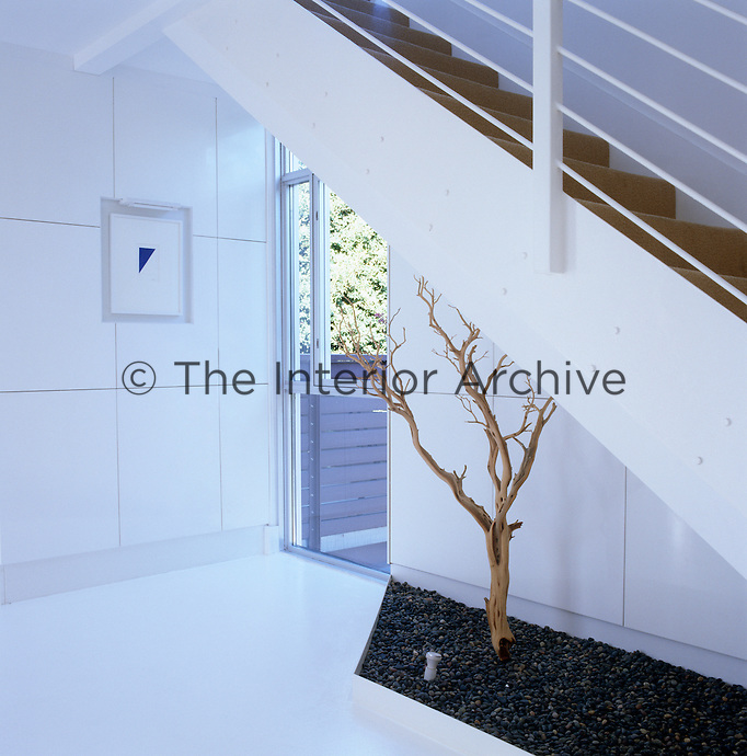A print by Ellsworth Kelly and a sandblasted tree tucked into a corner beneath the staircase