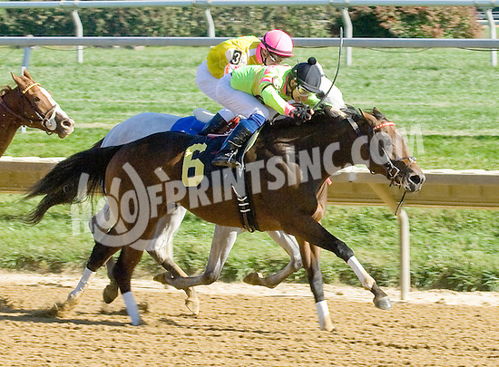 Ganesha winning at Delaware Park on 10/13/12