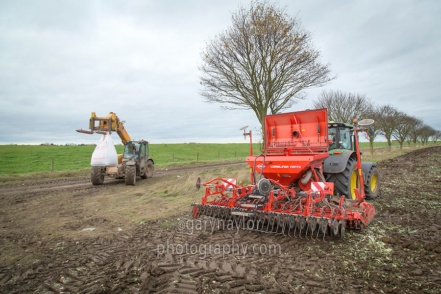 Filling drill with wheat seed - Lincolnshire, November