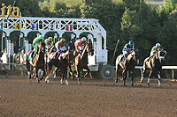 ARCADIA, CA  MARCH 11: The start of the Santa Anita Handicap (Grade l) on March 11, 2017 at Santa Anita Park in Arcadia, CA (Photo by Casey Phillips/Eclipse Sportswire/Getty Images)