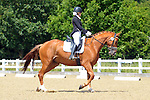 26/06/2015 - Class 6 - Elementary 57 - British Dressage - Brook Farm TC