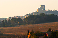 A view over vineyards and the village Chateauneuf-du-Pape, Vaucluse, Rhone, Provence, France