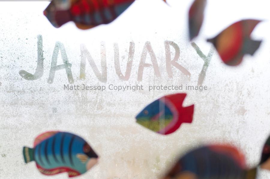 January for Calendar