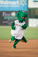 Kannapolis Intimidators mascot Tim E. Gator runs the bases between innings of the game against the Delmarva Shorebirds at CMC-Northeast Stadium on June 6, 2015 in Kannapolis, North Carolina.  The Shorebirds defeated the Intimidators 7-2.  (Brian Westerholt/Four Seam Images)